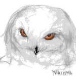 owl by MADsismo